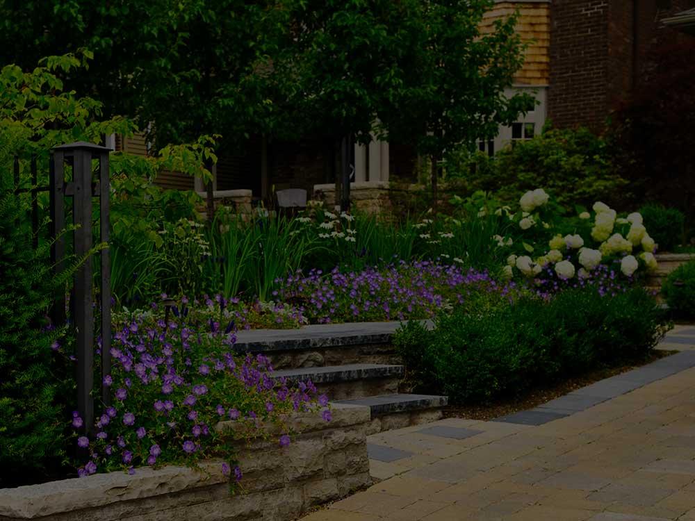 Cedar Commercial Garden Design