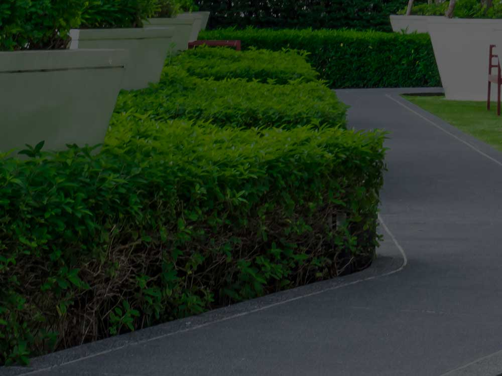 Lantzville Commercial Landscaping