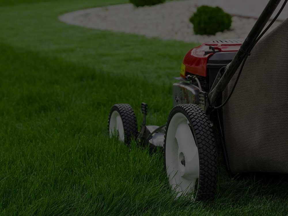 Cedar Lawn Mowing